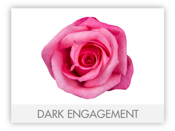 DARK ENGAGEMENT 10